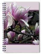 Magnolia Fantasy II Spiral Notebook