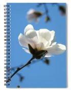 Magnolia Flower Tree Art Prints Blue Sky Floral Baslee Troutman Spiral Notebook