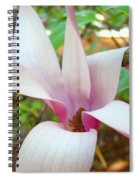Magnolia Flowering Tree Art Prints White Pink Magnolia Flower Baslee Troutman Spiral Notebook
