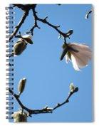 Magnolia Flowers Budding Art Prints Spring Floral Baslee Troutman Spiral Notebook