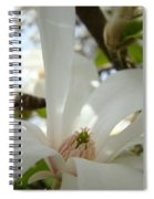Magnolia Flowers White Magnolia Tree Flower Art Spring Baslee Troutman Spiral Notebook