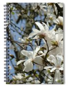 Magnolia Flowers White Magnolia Tree Flowers Art Prints Spiral Notebook
