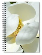 Magnolia Macro Spiral Notebook