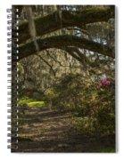 Magnolia Plantation Spiral Notebook