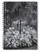 Magnolia Plantation Lightpost Spiral Notebook