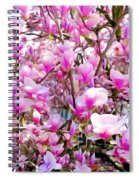 Magnolia Tree Beauty #1 Spiral Notebook