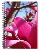 Magnolia Tree Pink Magnoli Flowers Artwork Spring Spiral Notebook