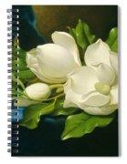 Magnolias On A Blue Velvet Cloth Spiral Notebook