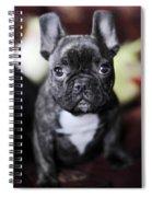 Magoo II Spiral Notebook