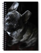 Magoo IIi Spiral Notebook