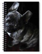 Magoo IIi Spiral Notebook