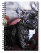 Magoo Spiral Notebook