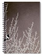 Magpie Spiral Notebook