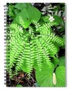 Maidenhair Fern, Adiantum Pedatum And Friends Spiral Notebook