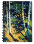 Maine Landscape 1919 Spiral Notebook