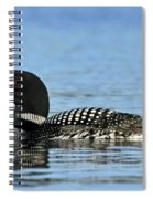 Maine Loon Spiral Notebook