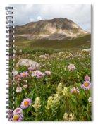 Majestic Colorado Alpine Meadow Spiral Notebook