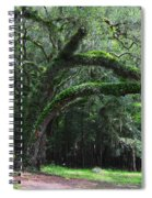 Majestic Fern Covered Oak Spiral Notebook