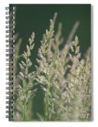 Majestic Grass Spiral Notebook