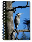 Majestic Great Blue Heron 2 Spiral Notebook