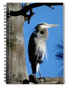 Majestic Great Blue Heron Spiral Notebook