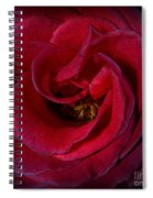 Majestic Rose Spiral Notebook