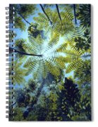Majestic Treeferns Spiral Notebook