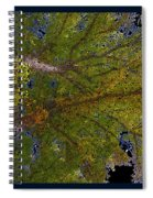 Majestic Trees Abstract Poster 2 Spiral Notebook