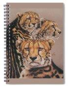 Majestic Vagabond Spiral Notebook