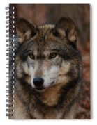 Majesty Spiral Notebook