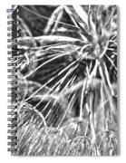 Make A Wish B / W Spiral Notebook