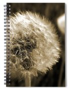 Make-a-wish Dandelion Sepia Spiral Notebook