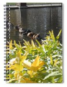 All My Ducks In A Row Spiral Notebook
