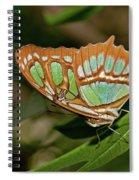 Malachite Butterfly Spiral Notebook