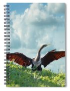 Male American Anhinga  Spiral Notebook