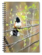 Male Eastern Spiral Notebook