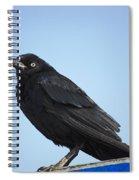 Male Grackle Spiral Notebook