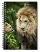 Male Lion And Cub Spiral Notebook