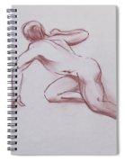 Male Nude 19 Spiral Notebook