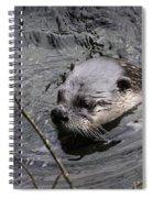 Male River Otter Spiral Notebook