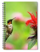 Male Ruby-throated Hummingbird Hovering Near Flowers Spiral Notebook