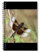 Male Widow Skimmer Dragonfly #3 Spiral Notebook