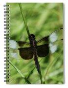 Male Widow Skimmer Dragonfly #4 Spiral Notebook