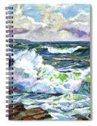 Malibu Cove Spiral Notebook