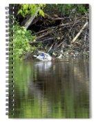 Mallard And Beaver Den Spiral Notebook