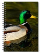 Mallard Green Spiral Notebook