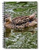 Mallard In Swirls Of Green Spiral Notebook