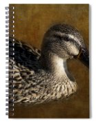 Mallard Matriarch Spiral Notebook