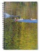 Mallard Splash Landing Spiral Notebook