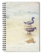 Mallards At The Chattahoochee River Spiral Notebook